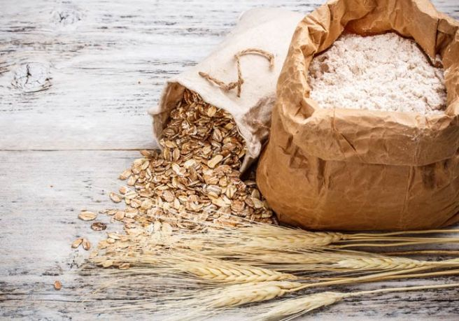 Barley plant, grains and flour